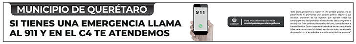 LLAMA AL 911